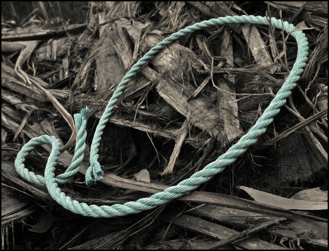 The_blue_rope