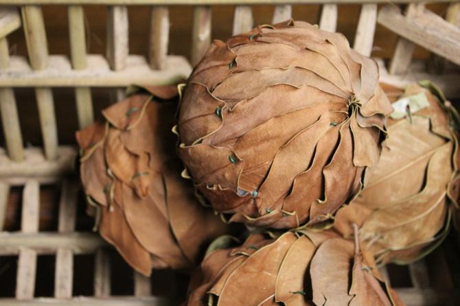 LeafBalls