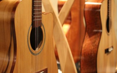Beyond the Trees- A celebration of Thomas Lloyd Guitars.